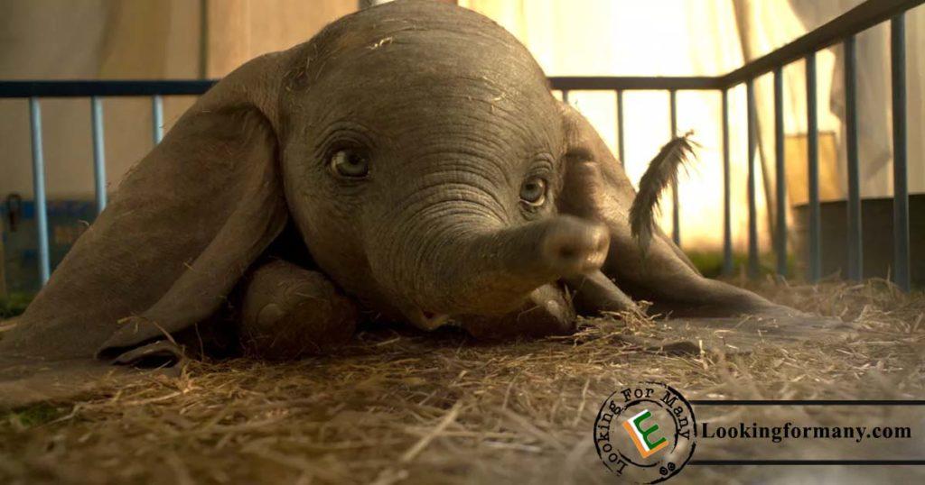 Dumbo Dubbed in Telugu As Dumbo